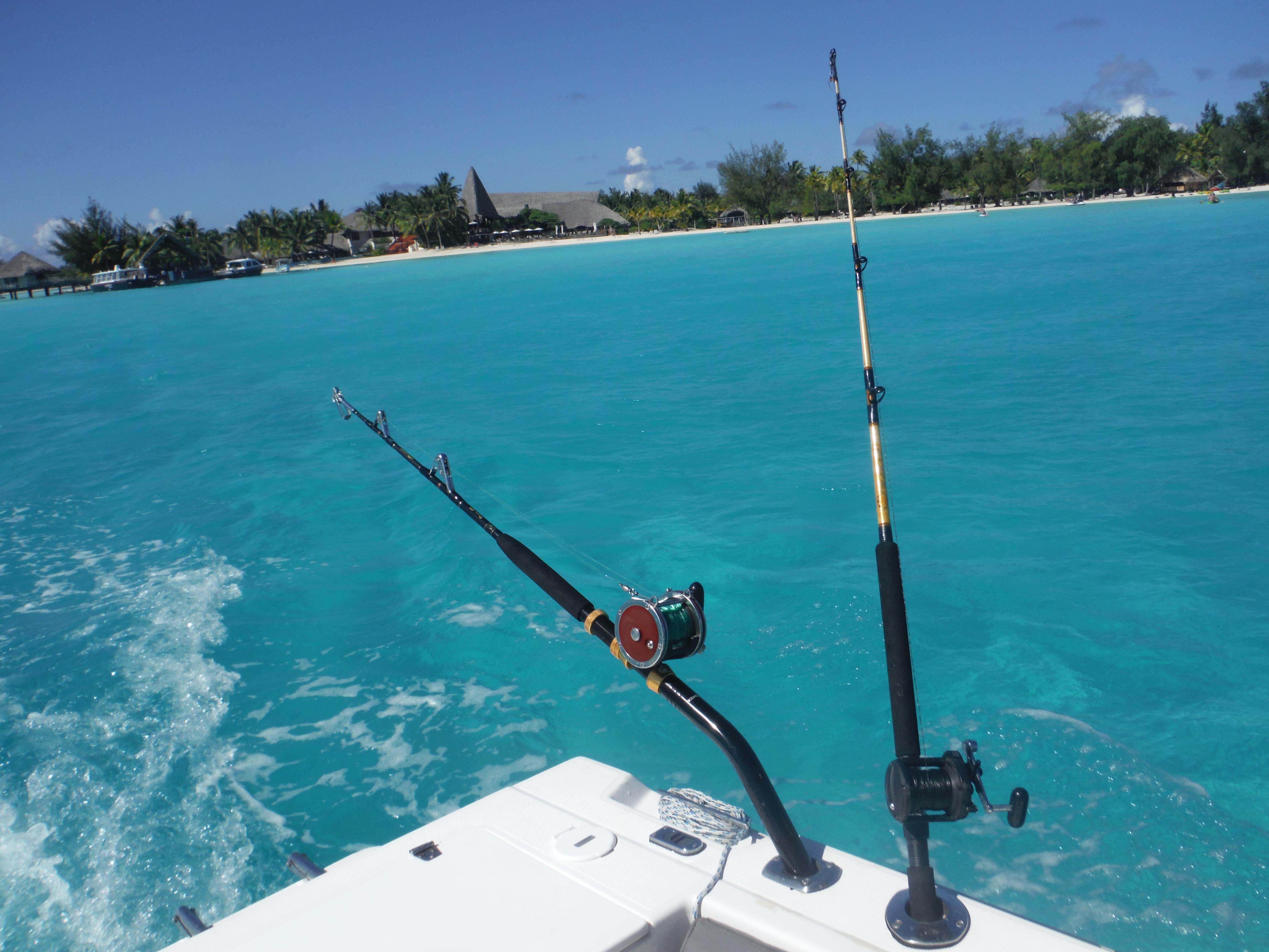 Bora bora fishing report for Bora bora fish